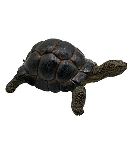 Dehner Dekofigur Schildkröte, ca. 38 x 27 x 16 cm, Polyresin, braun/grau