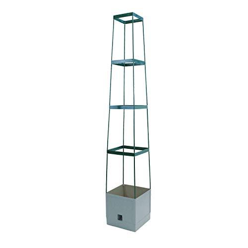 Bio Green Pflanzen-Aufzucht-Turm Maxitom, mit Rankhilfe für Tomaten und 2,5 L Wasserspeicher, anthrazit