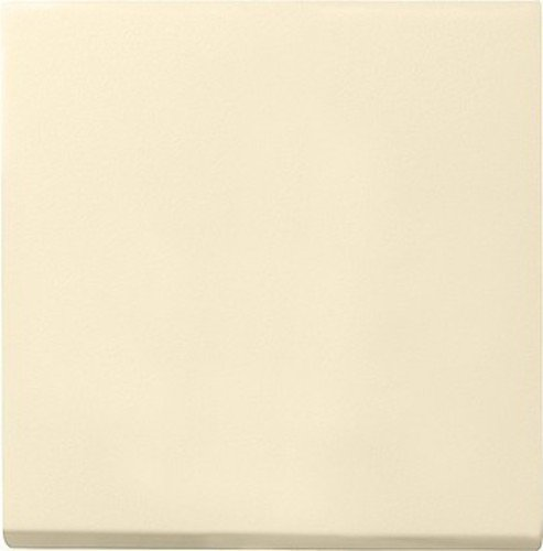 Gira Wippe 029601 Wechsel System 55 cremeweiss, Cremefarben