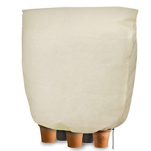 Cappuccio protezione piante, copertura per svernamento in tessuto non tessuto 80 g / m² protezione contro gel per piante in vaso e rose (240x200 cm)