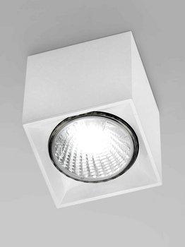 Zaneen Lighting D9-2061 Dau Spot Flushmount Flush Mount Ceiling Light, White by Zaneen Lighting