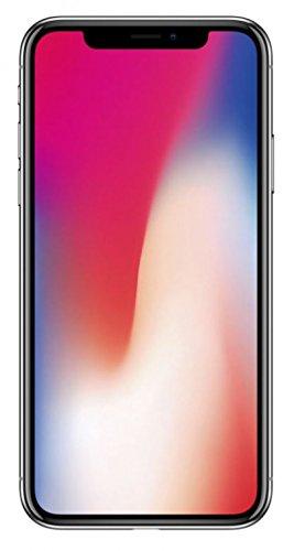 flat.design Filzhülle SKYLINE mit Webband Köln für Apple iPhone X - passgenaue Schutzhülle aus 100% Wollfilz (anthrazit) - Case Hülle im Slim fit Design für Apple iPhone X hellgrau