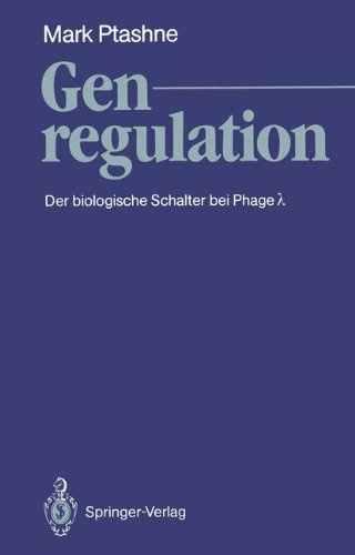 Genregulation: Der biologische Schalter bei Phage ?