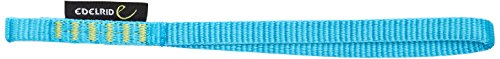 Edelrid Schlinge Tech Web Quickdraw Sling, Icemint, 25 cm, 717130253290 -