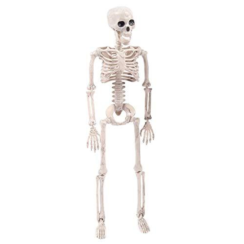 Kostüm Verrückte Krankenschwester - Halloween Dekoration Skelett,Gemeinsame Menschliche Skelett Dekoration Halloween Party Prop Dekoration,Halloween Deko Horror für Halloween Bars, Spukhäuser,Garten,Partys Dekoration