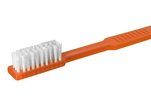Einmalzahnbürsten mit Zahnpasta Akzenta orange Einwegzahnbürste (50 Stück)