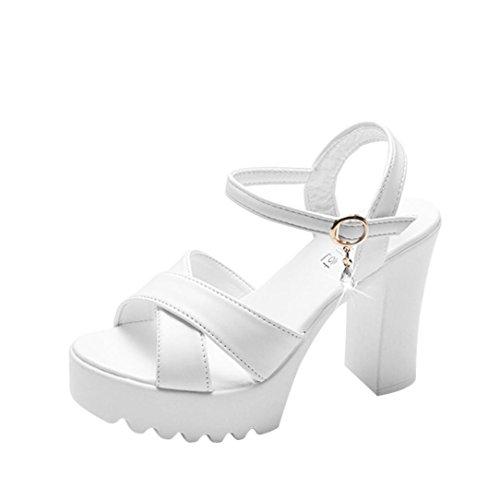 Sandalias de Vestir cuña Alta tacón Roma de Playa para Mujer, QinMM Casual Zapatos Verano Fiesta Chancla...