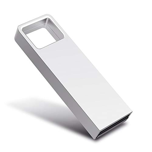 Aonny USB Stick, USB Stick 2.0, USB-Flash-Laufwerk USB Memory Stick Speicherstick (64GB, Silber-D)