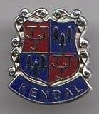 Kendal - Stadt Chelmsford Grafschaft Pin Wappen