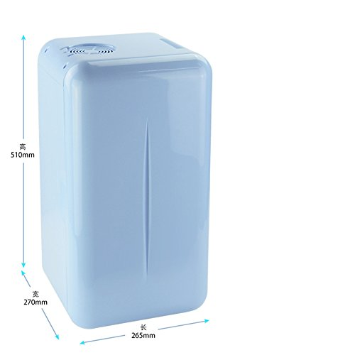 SL&BX Réfrigérateur À boissons,Studentischen wohnheimen büro kompakt-haushaltskühl-brust milch kosmetik frischhaltung - Mit Kühlschrank Gefrierfach Brust,