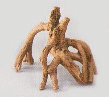 Deko - Wurzel Mangrove smal