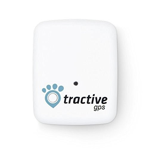 tractive gps tracker f r hunde und katzen. Black Bedroom Furniture Sets. Home Design Ideas