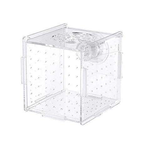 Balacoo fischzuchtbox-isolierbox brutkasten brutkasten Aquarium fischzuchtboxen teiler brutboxen zubehör für kleine…