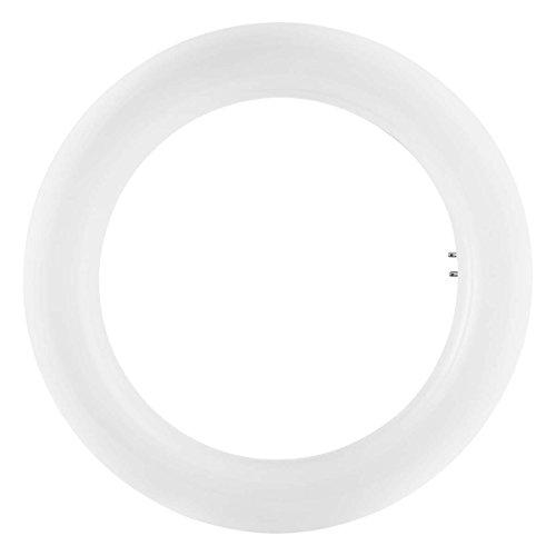 Osram Tubo Circular LED, 12 W, Blanco