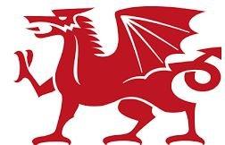 Bonusprogramm selbstfärbender Stempel, walisischer Drache -