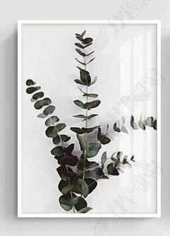 Geiqianjiumai Nordic minimalistischen grünen Pflanzen Poster und Leinwand Malerei Moderne Wandkunst minimalistischen Wand 40cmx50cm