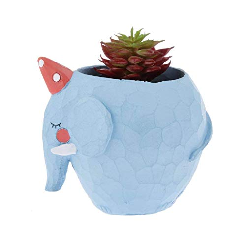 Beito Kunstpflanze Sukkulenten unbepflanzt künstliche Sukkulenten künstliche Sukkulenten künstliche Aloe Echeveria Agave Kalanchoe Tillandsia Luftpflanzen Stiele für