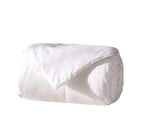 CHLIGHT White Twin Silk Quilts Bettwäsche Bettdecken & Daunendecken Bettdecken Winter Cotton Standard Quilts Mikrofaser-Bettwäsche@200 x 230 cm -