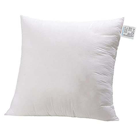 Évider Luxueux trop-pleins fluffly Duvet Alternative carré forme Taie d'oreiller Insert Ultra Doux, Machine à 65pour lit canapé, Polyester, 22 x 22