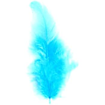 BAG 50 GREEN HEN FEATHERS FOR CARDS OR CRAFTS