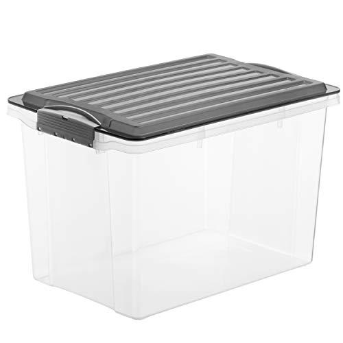 Rotho Compact Aufbewahrungskiste 19 l mit Deckel, Kunststoff (PP), grau /transparent, 19 Liter / A4 (39,5 x 27,5 x 27 cm)