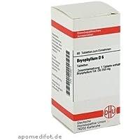 BRYOPHYLLUM D 6 Tabletten 80Tbl. preisvergleich bei billige-tabletten.eu