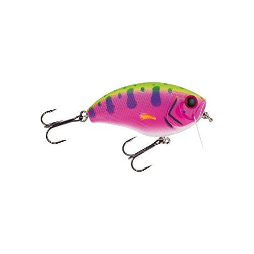 Wobbler Hecht angeln. Jackson Hechtwobbler 6.8 Rainbow Trout Wobbler