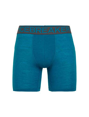 Icebreaker Herren Anatomica Zone Long Boxers Funktionsunterwäsche, Alpine/Monsoon, M