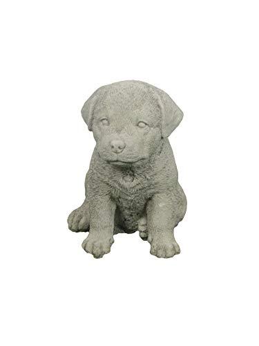 Steinfigur Hund, Kleiner Rottweiler, Gartenfigur, Tierfigur, 16 cm hoch -
