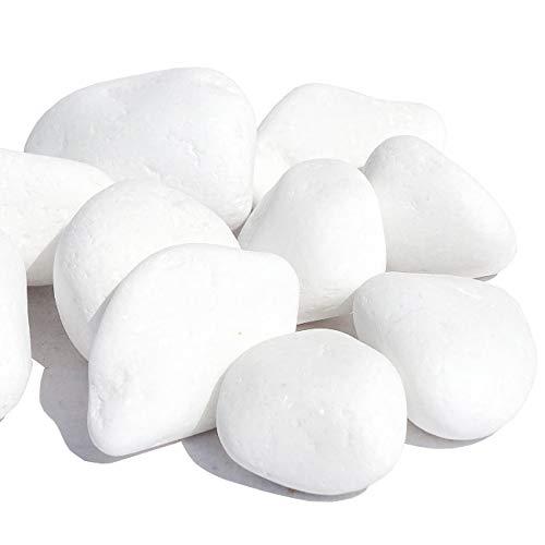 MGS SHOP Dekokies Dekosteine Streudeko Kies - Farbe wählbar (5 kg, Schneeweiß 15-25)
