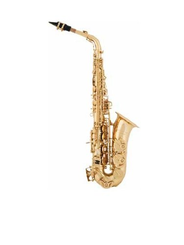 Preisvergleich Produktbild aS Arnolds & Sons AAS-110YG Alt Saxophon