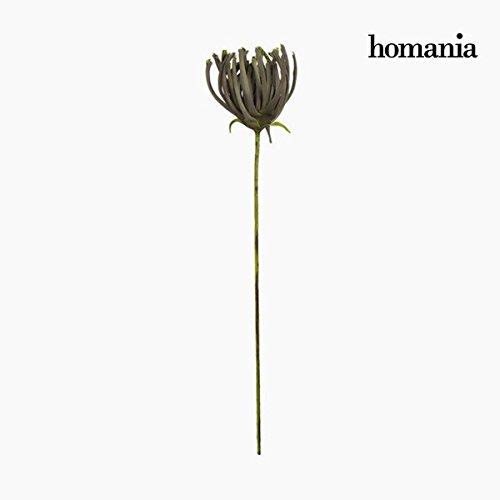 Figurine Décorative Fleur Mousse Gris (85 cm) by Homania