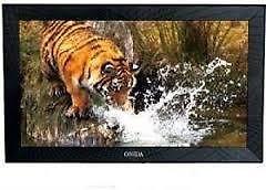 Onida Leo22frb 55 Cm (22 Inches) Hd Ready Led Tv