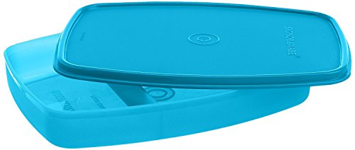 Signoraware Slim Plastic Lunch Box, T Blue