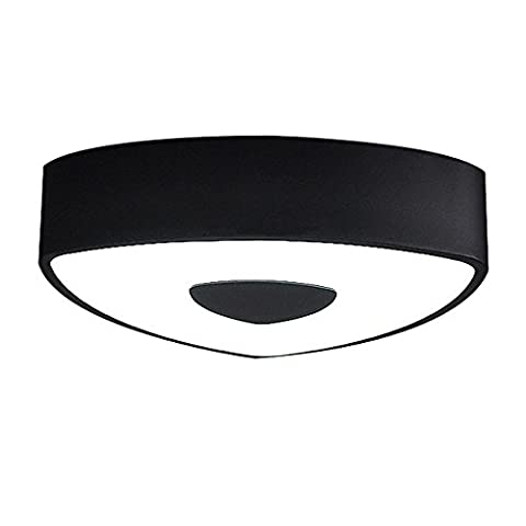 Modern Black Acrylic Shade Flush Mount Creative Simplicity Ceiling Light for Bedroom Living Room