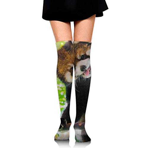 CVDGSAD Red Panda Compression Socken Foot Long Stockings Knee High Socken for Men Women Supports Sport Running Cycling Football Slim Leg Travel Medical Nursing
