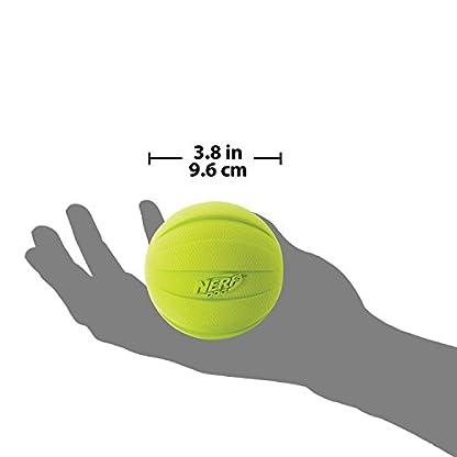 Nerf Dog Squeak Ball, 4.25-Inch, Red 4