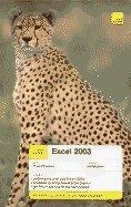 Teach Yourself Excel 2003