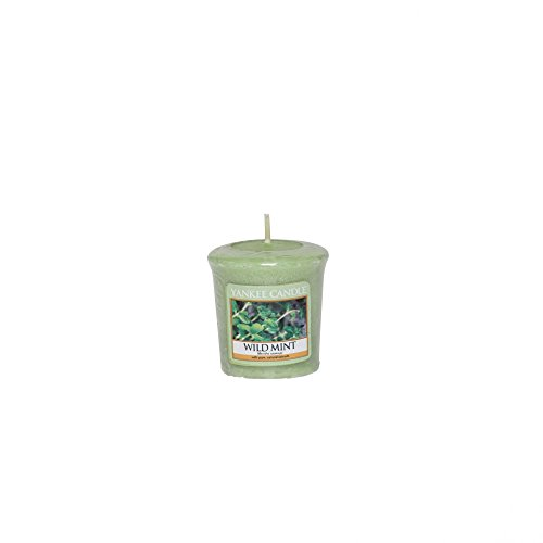 Minze Duftkerze (Yankee Candle Wilde Minze Votiv-duftkerze, 49 g, Plastik, Grün, 4.7 x 4.5 x 5.0 cm)