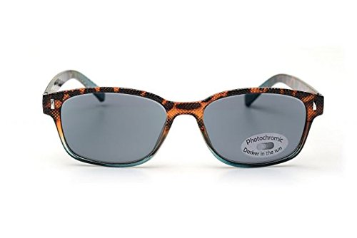 2in1 Lesebrille/Sonnenbrille +2,5 'Look and see' Lesehilfe mit photochromen Gläsern