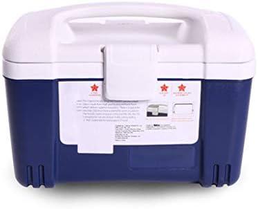 BFQY Scatola di Isolamento, Incubatore Portatile Refrigerato Refrigerato Refrigerato con Scatola di Conservazione | Per Vincere Una Ammirazione Alto  | Bella E Affascinante  537827