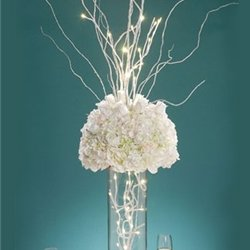 lsd-david-tutera-bridal-branches-31-in-20-warm-white-led-lights-battery-op