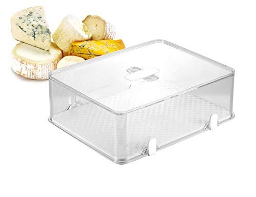 Tescoma Purity Contenitore Igienico Frigorifero per Formaggio, Plastica, Trasparente