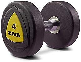Ziva ZVZVO-DBPU-1008-Y Zvo Urethane Dumbbell, Black/Yellow