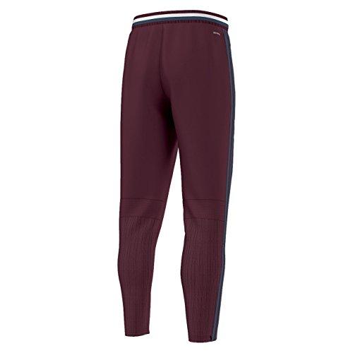 Adidas pantalon de gardien Unisexe con16Training Pants, pantalon marron foncÃ/marron Maroon/Minblu