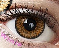 """Farbige Kontaktlinsen Jahreslinsen braun hellbraun haselnuss """" Hazel"""" dolly ohne Stärke COSPLAY"""