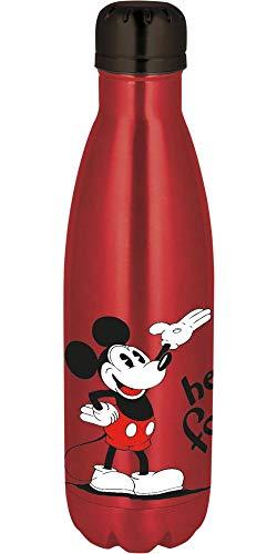 Disney Mickey stainless steel bottle