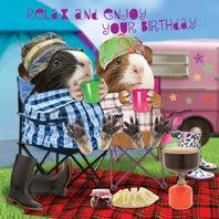 Meerschweinchen Karte - Happy Campers - Geburtstagskarte