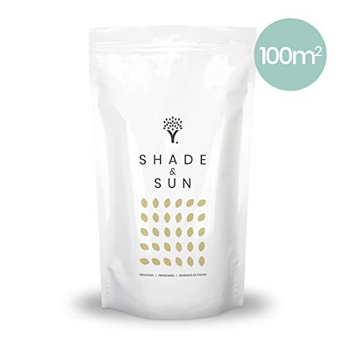 MOOWY | Schatten & Sonne Rasensamen | Schattenrasen Nachsaat schnellkeimend & widerstandsfähig | Premium Rasen | Sommer Grassamen | Gras Regeneration | Rasensaat Zierrasen Samen | 100m² / 1,70kg