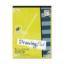 mead-drawing-pad-heavy-weight-305-x-457-cm-24-fogli-bianco